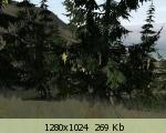 b3278c9dc4a23d2d480a2fab569afed5.jpg